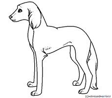 Paint friendly Saluki lineart FREE by Mitzi-Mutt