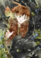 .How to train your dragon. by Hetiru