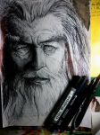Gandalf ... by titinacho