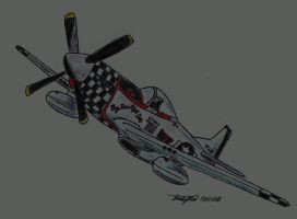 P-51D Mustang by NDTwoFives