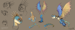 Stormfly studies by Ticcy