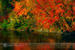 red river by RaFlAmeS