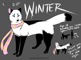 Winter by Capukat