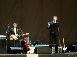 2012 The Walkmen 002. by GermanCityGirl