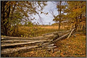 Autumn Fence 1 shot in RAW by Rebacan