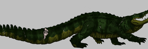 Real Alligator Jesie by Alligator-Jesie