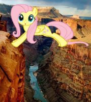 Fluttershy at the Grand Canyon by snakeman1992