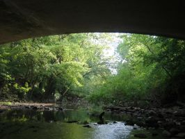 Under bridge creek by SeverinR