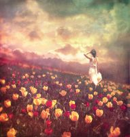 Field of Tulips by byDecember