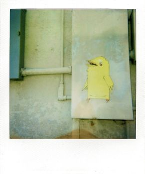 Yellow Bird by alchemypenguin