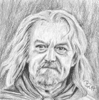 Theoden by LoonaLucy