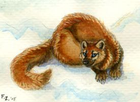 Maui Marten by Foxfeather248