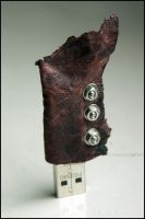 Hellhound's pendrive 2 by Asaurus
