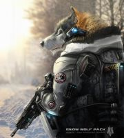 WOLF PACK NEO soldier2 by AGA-99