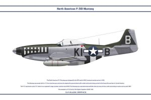 Mustang USAAF 55th FS 1 by WS-Clave