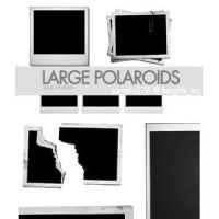 Brushes: Large Polaroid by achodesign