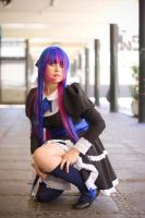 Anarchy Stocking by cloeth