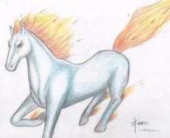 fire horse 2011 by FenrisDeSolar