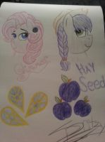 AU designs for Sissy: Glimmer and Hay Seed by Strawberry-Spritz