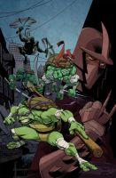TMNT by Ryan Ottley by andrewchandler80