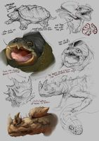 Turtles and Lizzards by Andy-Butnariu