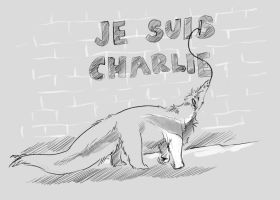 Je suis by antubis0