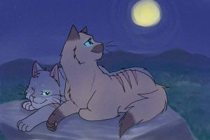 Night belongs to Lovers by CYcat