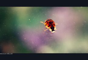 So little in a world of colour by Glambition