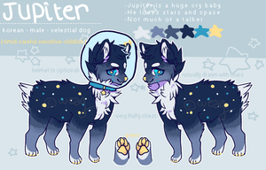 Jupiter Reference Sheet by weaq