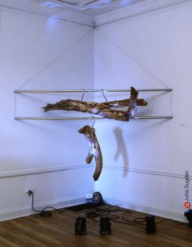 hung signals installation by cloistering
