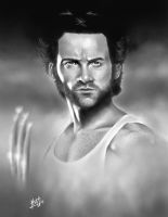 Wolvie by ccobb1234