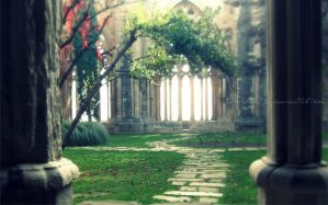 The cloister by GiuliaDepoliART