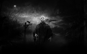 Lord Voldemort 2012 Wallpaper by Mohamed-Fahmy