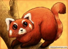Red Panda by MoogleyMog