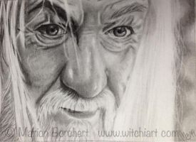ACEO #59 Gandalf by WitchiArt