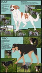 Dogs 2- Character sheet by LewKat