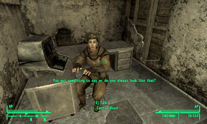 Fallout: New Vegas Sillyness by RustyRaccoon