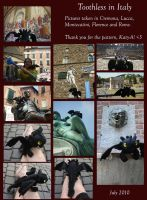 Toothless in Italy by Caty-P-Boots