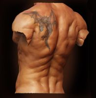 Male Anatomy - Back02 by shoaibMalik
