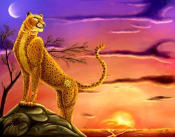 The Golden Cheetah and the sun by HedwigeKy