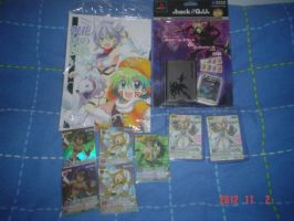 .hack LINK cards, doujinshi and memory card by Scygoku