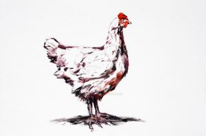 The Wise Chicken by CliveBarker