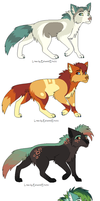 Adopts by Tazzil