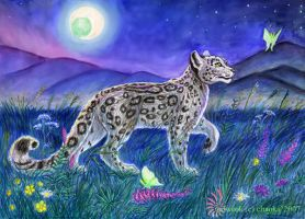 Wolf-eye night by chaoka