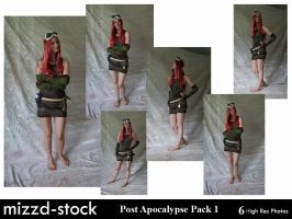 Post Apocalypse Pack 1 by mizzd-stock