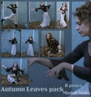 AutumnLeaves pack by Nekoha-stock