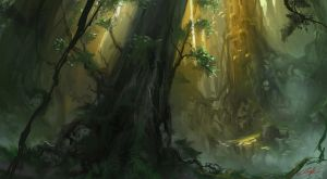 Forest.. by Chillay