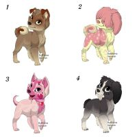 Adoptable Cafe Puppies by dachunds2023
