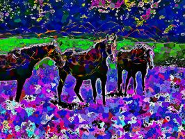 Equine Psychedelia by znkf0908
