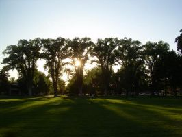 Park Sunset 2 by abuseofstock